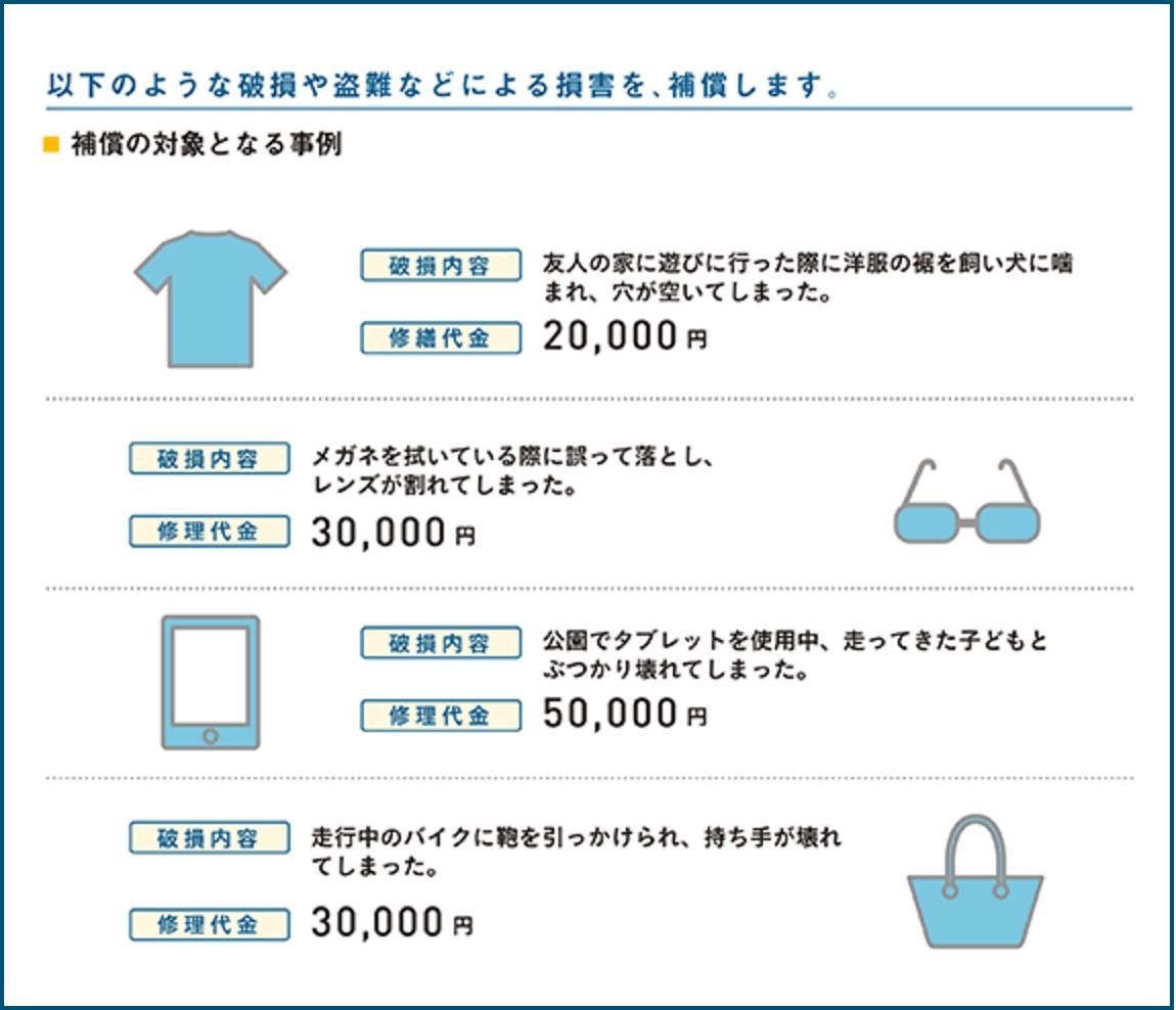 ショッピングプロテクションワイド2
